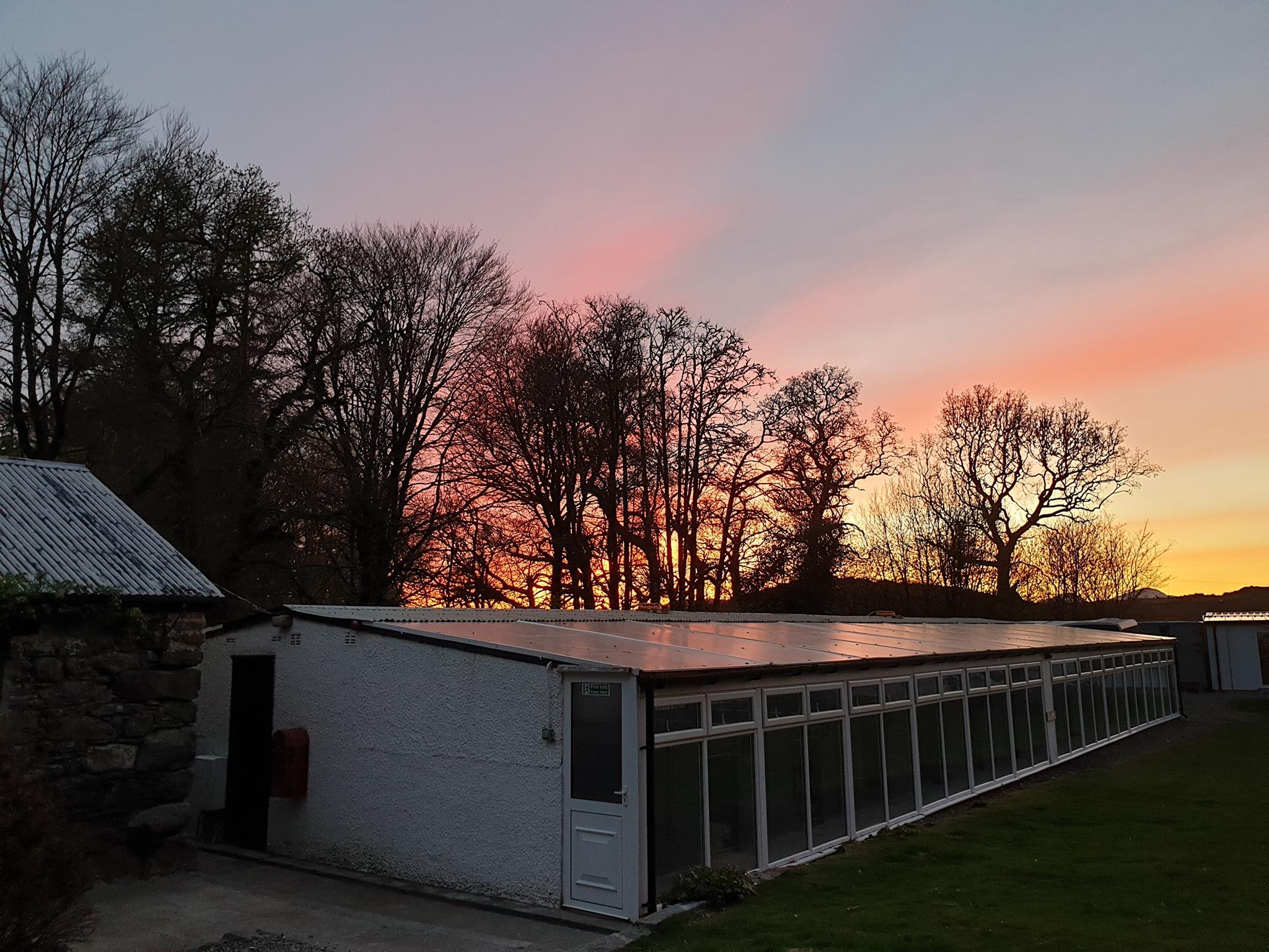 fiona kennels sunset